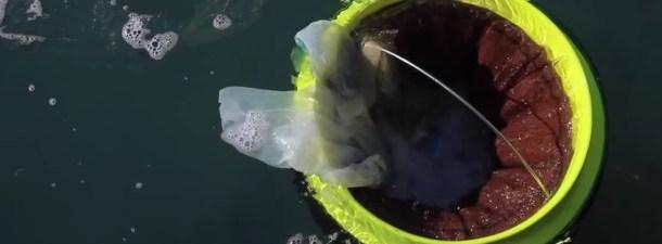 Seabin é o projeto mais promissor para manter limpos os oceanos