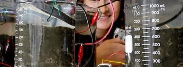 A urina poderia ser transformada em eletricidade com células de combustível microbianas