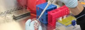 O estranho e fascinante negócio de imprimir partes do corpo em 3D