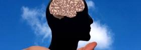 Divertir-se com este jogo on-line é ajudar a combater o Alzheimer